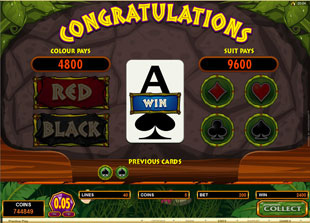 Tiger's Eye Slot Gamble Feature